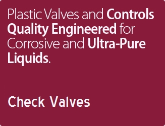 """Plast-O-Matic 1-1//2/"""" Threaded PVC Check Valve w//EPDM CKS150EPT-NC-PV"""